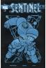 Sentinel #7